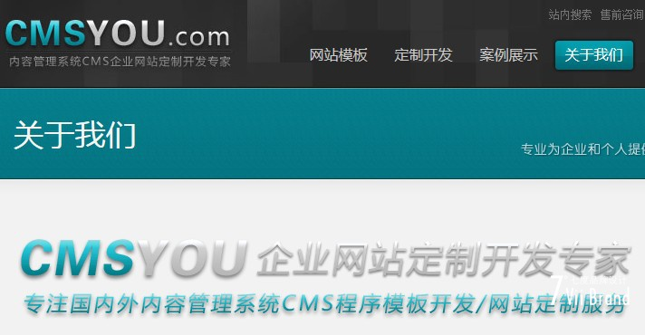 CMSYOU网站定制
