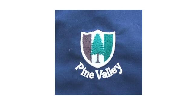 松树配合大地色和绿色的商标图案直接反映出位于图片